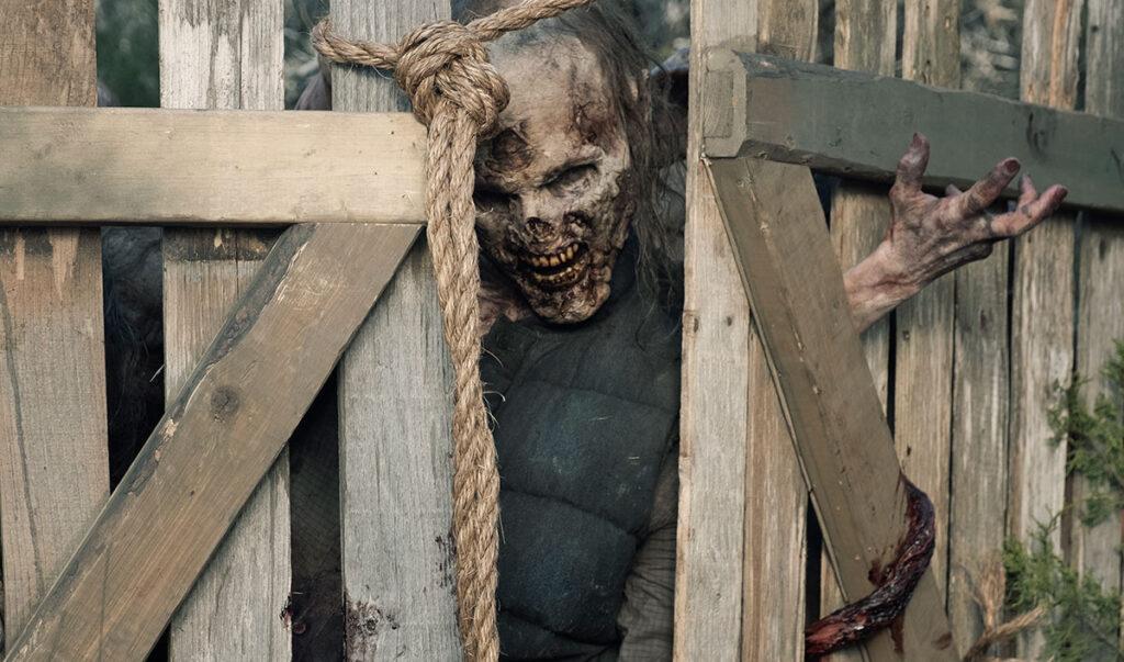Fear The Walking Dead- The Walking Dead - AMC Network